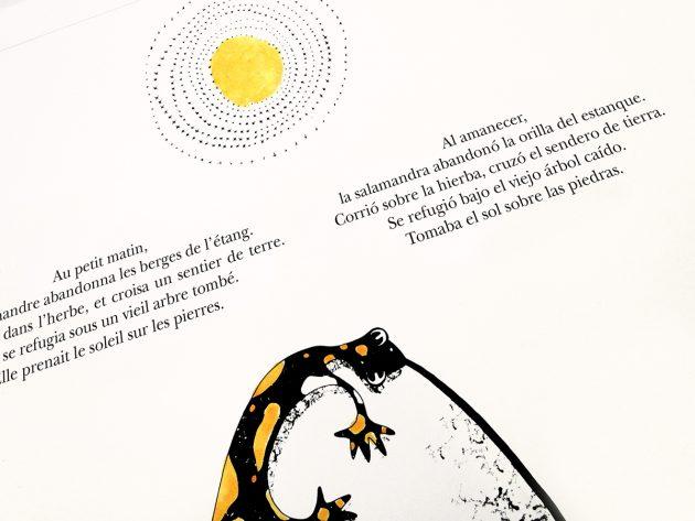 La noche y el bambú. Cuento bilingüe. Bilingual. Bilingue.